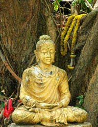 Buddhist Meditation Enlightenment Four