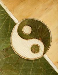 Microcosmic Orbit Meditation Taoism